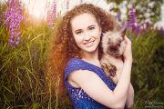 Фотосессия в поле люпинов с кроликом